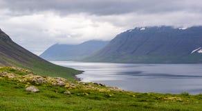 Panorama largo do ângulo da paisagem de Dynjandisvogur em Islândia Imagens de Stock Royalty Free