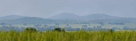 Panorama lat pola i las Zdjęcie Royalty Free