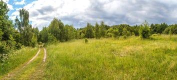 Panorama lato krajobraz obraz royalty free