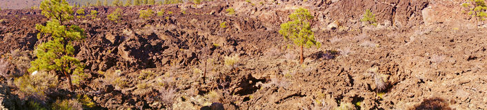 Panorama, Lava flow Royalty Free Stock Photography