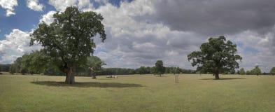 panorama- liggande Arkivbild