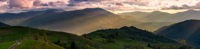 Panorama lindo do campo no por do sol Imagem de Stock
