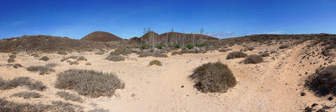 Panorama of Lobos Island. Canary Islands Royalty Free Stock Photo