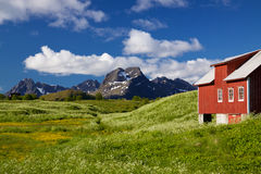 Panorama on Lofoten islands Stock Photography