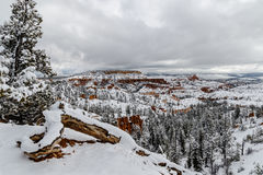 Panorama, log e árvore de Bryce Canyon com neve e nuvens Fotos de Stock Royalty Free