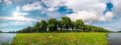 Panorama of the longest linden alley in blossom. Beautiful landscape on a sunny day with some clouds on a blue summer sky. Location Uzhgorod, Ukraine Stock Images