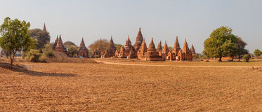 Panorama with lot of pagodas, Bagan Stock Photography