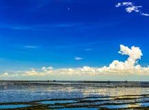 Panorama of low tide sea. Stock Photos
