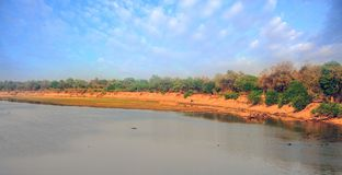 Panorama of the Luangwa River in Zambia. River Luangwa with a nice blue sky in South Luangwa National Park, Zambia Royalty Free Stock Image