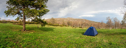 Panorama of the lush green spring meadows, tent and trees Stock Image