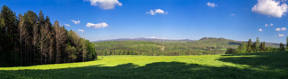 Panorama of the lush green spring meadows and trees Stock Photography