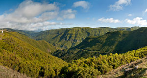 Panorama of Madeira Royalty Free Stock Image