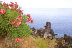Panorama of Madeira coast, Portugal Royalty Free Stock Photos