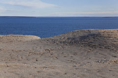 Panorama of the magdalena island. In the strait of magellan. Chile Royalty Free Stock Image