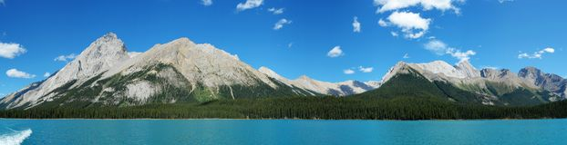 Panorama of maligne lake. Panorama view from a cruise boat in maligne lake, summer view of canadian rockies, jasper national park, alberta Royalty Free Stock Photography