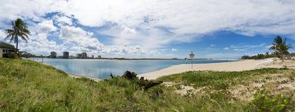 Panorama Maroochydore d'arbre de coton Photo libre de droits