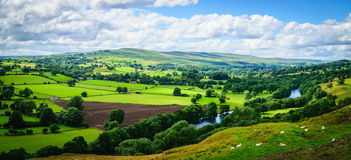 Panorama Meandering River Royalty Free Stock Photography