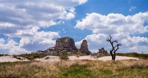 Panorama med den Uchisar slotten och konturn av ett torrt träd i Cappadocia, Turkiet royaltyfria bilder