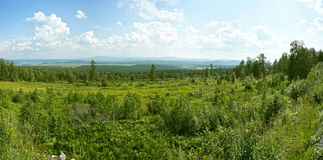 Panorama met bergen en bos Stock Foto