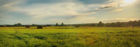 Panorama met hooibergen Royalty-vrije Stock Foto's