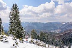Panorama met twee skiërs en behandelde bomen De winterlandsca Stock Afbeelding