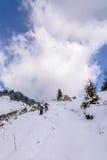 Panorama met twee skiërs en behandelde bomen Verticale mening Stock Fotografie