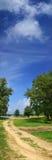 Panorama met weg Stock Foto