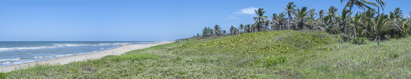 Panorama- mexicansk Gulf Coast Arkivbild