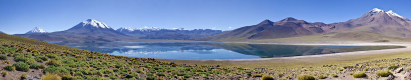 Panorama of Miscanti Lagoon in Atacama Desert Stock Photo