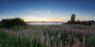 Panorama of misty morning in a field in summer, Russia, Ural Stock Image