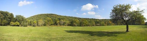 Panorama mit Apfelbaum Lizenzfreies Stockfoto