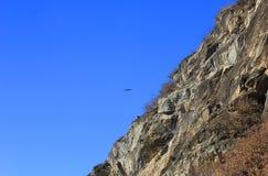 Panorama mit Felsen und einem Adler auf dem Himmelhintergrund Stockfoto