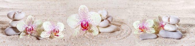 Panorama mit Orchideen und Zensteinen lizenzfreies stockbild