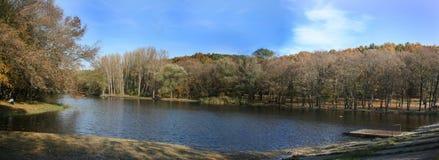 Panorama mit See, Himmel und Bäumen Lizenzfreies Stockfoto