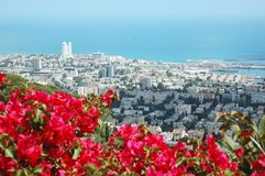 Panorama of modern city Haifa ,Israel Stock Photo