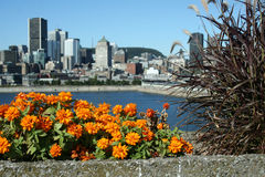 Panorama of Montreal (Canada) from Habitat 67. A famous housing complex built for the Expo 1967, the World's Fair Royalty Free Stock Photo