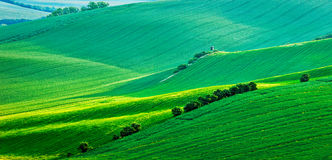 Panorama of Moravian rolling landscape with Stock Photography
