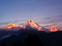 Panorama of mount Annapurna South, Nepal royalty free stock photo