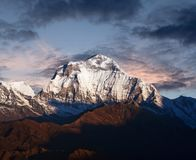 Panorama of mount Dhaulagiri at sunset, Nepal Himalaya. Panorama of mount Dhaulagiri at sunset - view from Poon Hill on Annapurna Circuit Trek in the Nepal royalty free stock photo