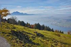 Panorama of Mount Pilatus and Lake Lucerne covered with frog, Alps, Switzerland Royalty Free Stock Photo