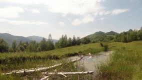Panorama of mountain bogs in which lie the old birch and dragonflies flying. High in the mountains of ancient Europe in all ponds and puddles in the late spring stock video