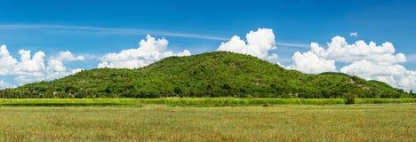 Panorama mountain green Royalty Free Stock Image