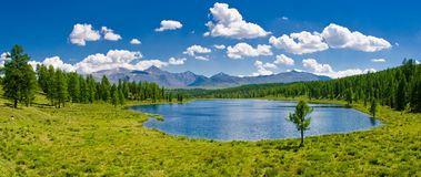 Panorama of mountain lake, Altai, Russia Royalty Free Stock Photo
