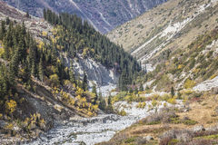 The panorama of mountain landscape of Ala-Archa gorge in the sum Royalty Free Stock Image