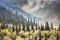 The panorama of mountain landscape of Ala-Archa gorge in the sum Royalty Free Stock Images