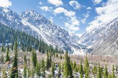 The panorama of mountain landscape of Ala-Archa national park Stock Photos
