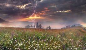 Panorama of mountain meadows in Transcarpathia Royalty Free Stock Photos