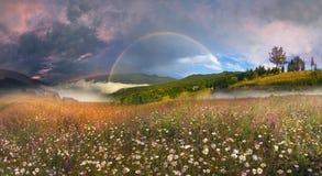 Panorama of mountain meadows in Transcarpathia Stock Photography