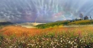 Panorama of mountain meadows in Transcarpathia Royalty Free Stock Photo