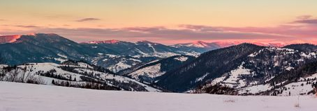 Panorama of mountain ridge at dusk in winter. Panorama of mountain ridge at dawn in winter. beautiful landscape with forested hills in snow. clouds on sky and Royalty Free Stock Images